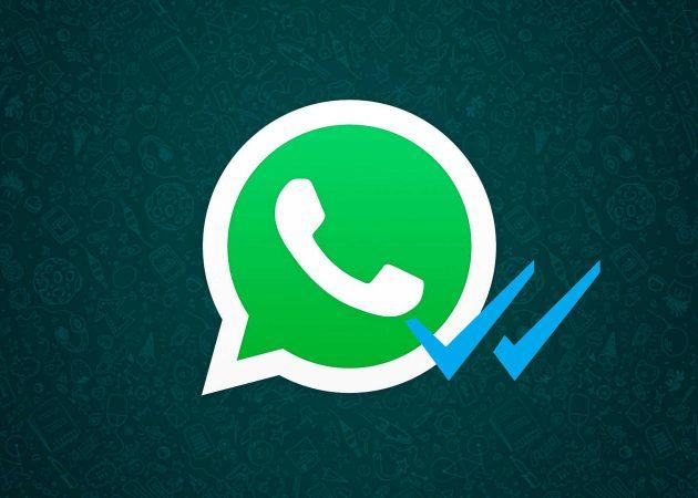 """El 95,1% de la población española elige la mensajería instantánea y hay una """"verde"""" con 1.000 millones de usuarios y próximas novedades para su tienda on line"""